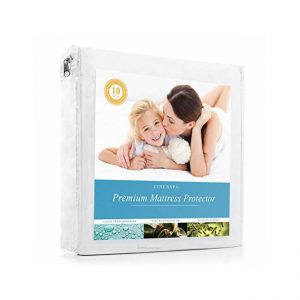 The LINENSPA Premium Smooth Fabric Mattress Protector