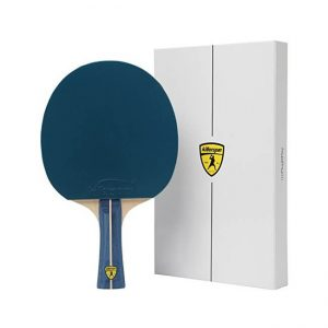 The Killerspin Table Tennis Paddle